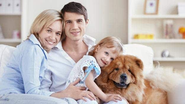 Wills & Trusts dog-young-family Direct Wills Camden Town